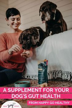 I tried a new line of dog supplements called Happy Go Healthy Brilliant Bites Supplements. They address a range of concerns (like my dog's itchy skin or digestive issues) with immune health it's their core! I've been testing the Gut Health and Skin & Coat formulas withy labradors. I've noticed a difference in their health! I love that they both contain probiotics and prebiotics that support gut and immune health for my dog. Check out this new dog health supplement in my blog post review! Black Lab Names, Itchy Dog, Durable Dog Toys, Call Happy, Therapy Dogs, Gut Health, Dog Care, Dog Grooming, Dog Friends