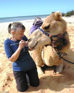 Discussing knitting techniques with a very friendly Jenny after our camel ride at Monkey Mia in WA