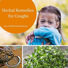 """Herbs are phenomenal at supporting a person when they have a cough. Rather than throwing in a """"kitchen sink"""" of cough herbs, the real effectiveness of herbs for cough comes in the diagnosis of what kind of cough it is. Productive? Unproductive? Hot? Cold? Spasmodic?"""