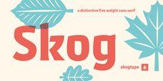 Skog Sans - Webfont & Desktop font « MyFonts