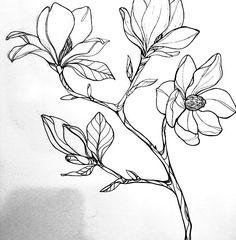 Botanical Drawings, Botanical Art, Botanical Illustration, Illustration Art, Lotusblume Tattoo, Tattoo Drawings, Art Drawings, Asian Flowers, Flower Sketches