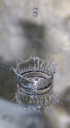 Grey Splash