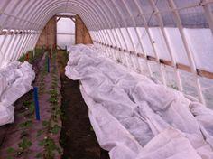 Season Extension on the SIFT Farm.