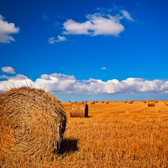 Normandy without hay circles is like a bird without songs by Allard Schager, via 500px