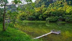 Only 1h from Emeralda Resort Ninh Binh, Cuc Phuong National Park is an ideal destination at weekend