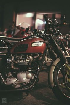"""beardbrand:  A beautiful Triumph, """"Night Ride"""" – The Mighty Motor, posted bycollectori"""