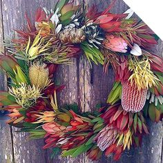 A beautiful Christmas wreath made with Australian native flowers. It's always nice to add a touch of Australian charm to Christmas and these flowers and foliage are perfect as they dry well and last ages! Pic by Dig Gardens Aussie Christmas, Australian Christmas, Summer Christmas, Christmas Flowers, All Things Christmas, Christmas Crafts, White Christmas, Christmas Ideas, Christmas In Australia