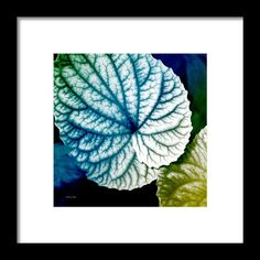 Blue Leaf Pattern Square Framed Print By Christina Rollo