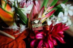 T & B had the cutest ring holders, and we love the tropical flowers as a backdrop. Get more inspiration for your own tropical wedding by viewing our wedding gallery page!  #weddingideas #weddingdesign #weddinginspo #hawaiiwedding Wedding Photo Gallery, Wedding Photos, Hawaii Wedding, Our Wedding, Ring Holders, Cute Rings, Tropical Flowers, Wedding Designs, Weddingideas