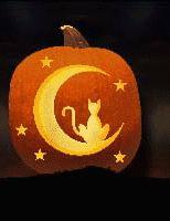 Obrázek Halloween Dýně a Kočky z Halloween Dýně a Kočky