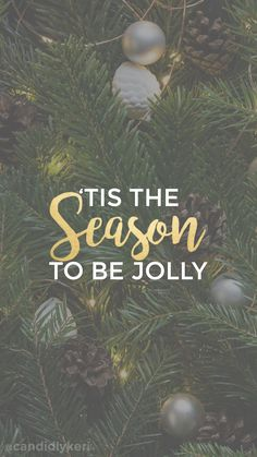 """Tis the season to be Jolly""Christmas tree pine background wallpaper you can download for free on the blog! For any device; mobile, desktop, iphone, android! FREE CHRISTMAS WALLPAPER DOWNLOAD"