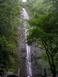 Hiked the beautiful mountains of Oahu #Hawaii to Manoa falls