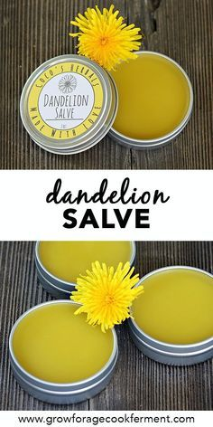 How to Make and Use Dandelion Salve How to Make and Use Dandelion Salve,Sacred Plantwisdom When dandelions are blooming make this healing dandelion salve recipe using foraged dandelions! This salve has many medicinal benefits. Natural Home Remedies, Natural Healing, Herbal Remedies, Health Remedies, Holistic Healing, Cold Remedies, Natural Medicine, Herbal Medicine, Cooking With Turmeric