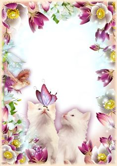 Flower frames for Photoshop on 8 March download
