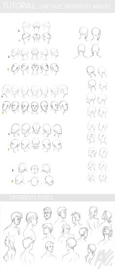 How to draw face and head: