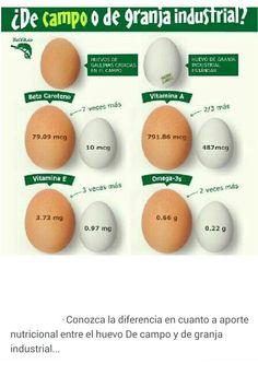 Diferencia en cuanto a aporte nutricional de huevo de campo o de granja.
