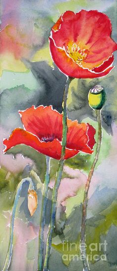 Poppies 3 by Mohamed Hirji - Poppies 3 Painting - Poppies 3 Fine Art Prints and Posters for Sale Watercolor Poppies, Watercolor Paintings, Watercolors, Poppies Art, Red Poppies, Abstract Paintings, Art Paintings, Oil Painting Flowers, Painting & Drawing