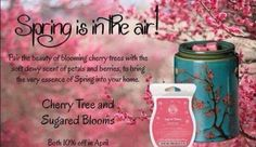 Spring is here and that means more scentsy to come