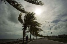 Hurricane Irma Leaves Travel Agents and Cruise Lines Extremely Concerned and Hoping for the Best  Winds brought by Hurricane Irma blow palm trees lining the seawall in Caibarien Cuba on Friday. Desmond Boylan / Associated Press  Skift Take: Hurricane Irma is a monster storm the likes of which the Caribbean and United States haven't seen in a while. While tourism usually rebounds after major storms we haven't seen an active Atlantic hurricane season like this for nearly a decade and many…