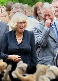 Prince Charles and Camilla, royally amused. :)
