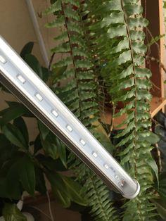 Фитолампа 15 светодиодов. Яркая, очень эффективная