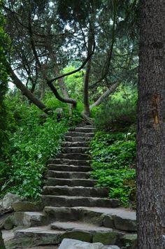 Uniwersytet Jagielonski Ogród Botaniczny by Pawel Dubnicki