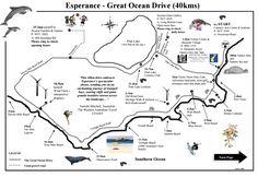 Day The Great Ocean Drive near Esperance Western Australia, Australia Travel, Perth, Melbourne, Surf, Quokka, Blue Bodies, Ocean Drive, Van Life