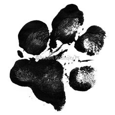 Dog's paw print in high contrast black and white.