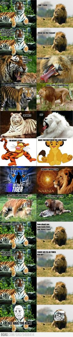 Super funny animals memes make me laugh lol grumpy cat Ideas Funny Jokes For Kids, Good Jokes, Hilarious Stuff, Funny Animal Memes, Funny Animals, Funny Memes, Mafia, Lion King Funny, Funny Tiger