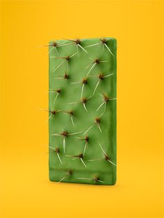 cactus // objects squared // carl kleiner