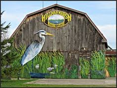 With 5 kilometres of trails around this precious marshland habitat, Hillman Marsh draws wildlife and people from both near and far. Chatham Kent, Essex County, Lake Erie, Long Weekend, Windsor, Conservation, Habitats, Ontario, Michigan