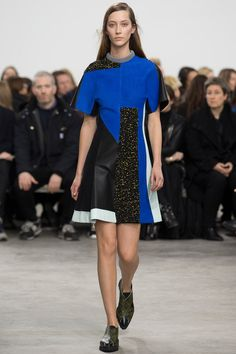 Proenza Schouler | Fall 2014 Ready-to-Wear Collection