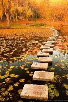 Otoño y camino de piedras en el agua