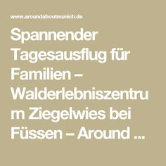 Spannender Tagesausflug für Familien – Walderlebniszentrum Ziegelwies bei Füssen – Around About Munich