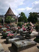 Unter Rosen gebettet, der Johannisfriedhof in Nürnberg - Kult-Urzeit | Mystische Orte in Deutschland und aus dem Rest der Welt