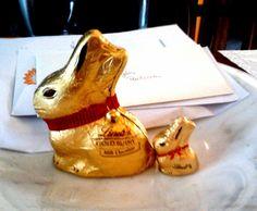 Chocolate!!!! Delicious!!!!!