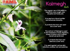 The regular use of #KALMEGH #Herb is helpful to cure #cough, #cold, #sinusitis and #BodyPain.