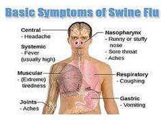 Basic symptoms of swine flu https://fitnesschap.com/treatment-and-symptoms-of-swine-flu-in-urdu/