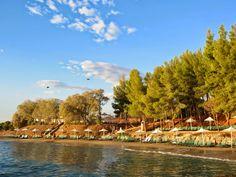 The private beach of Candia Park Village in Crete