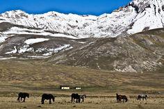 I love trekking: Campo Imperatore, il nostro piccolo Tibet. | BoBos