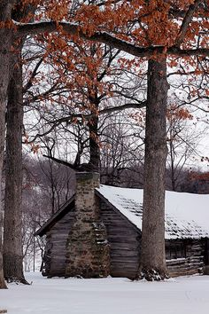 Winter Cabin by Cole Chase Photography, via Flickr... Iowa City, Iowa