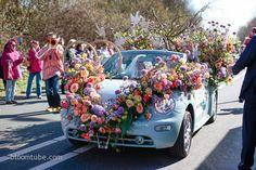 Amazing flower adorned car... Dutch Flower Bulb Pride 2013 www.bloomtube.com