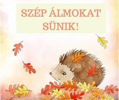Parenting Hacks, Hedgehog, Kindergarten, Preschool, Teddy Bear, Smoothie, Animals, Autumn, Animales