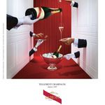 totally french : Champagne G. Champagne Drinks, Champagne Party, Gh Mumm Champagne, Brand Advertising, Advertising Ideas, Water Branding, Dom Perignon, Fun Places To Go, Pose