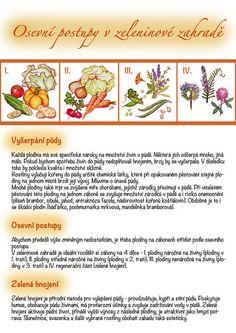Kartičky návrhy — KT gardens ktgardens Growing Plants, Indoor Plants, Montessori, Gardening, School, Tips, Lawn And Garden, Inside Plants, Horticulture