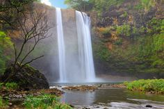 Kauai Wailua Falls where opening scenes of Fantasy Island were - the view from the bottom was spectacular!