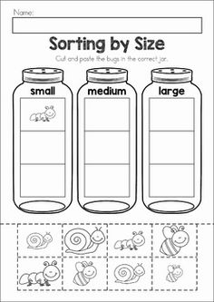 Spring Preschool No Prep Worksheets & Activities. A page from the unit: sorting bugs by size cut and paste