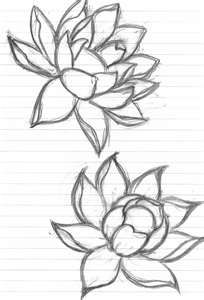 Lotus flower sketch.