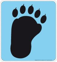 image logo patte d'ours