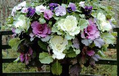 ornamental kale flower arrangements   ... kale $ 29 imagine this gorgeous arrangement of ornamental kale fall